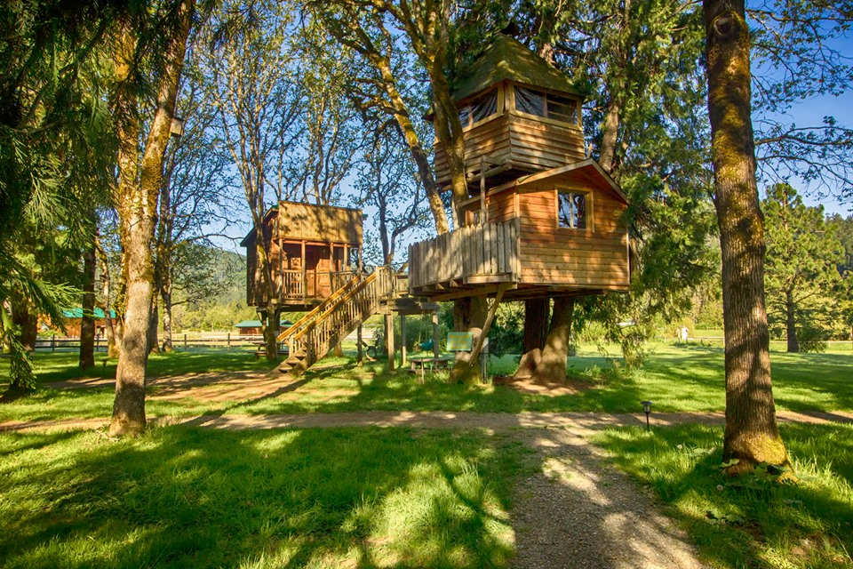 Lithia Toyota Medford >> Out 'n' About Treehouse Resort- Zip, Sleep, and Play in ...